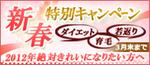 btn_2012shinshun_camp-thumb-180xauto-1389.jpg